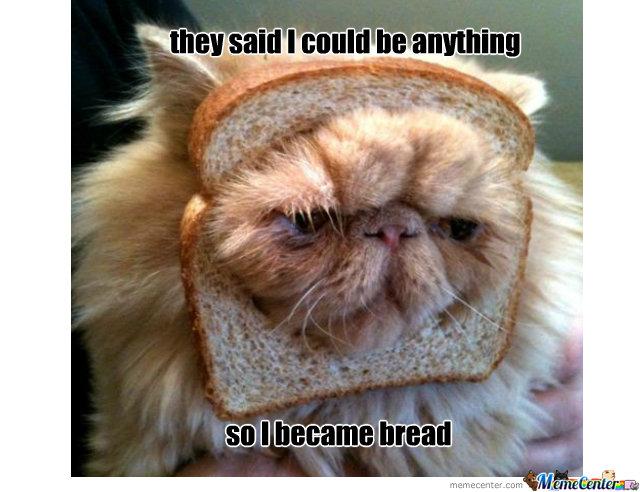 Bread meme